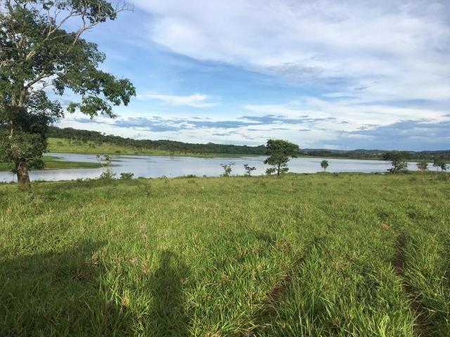 Fazenda 100 Alqueires, entre Professor Jamil e Piracanjuba - Foto 2