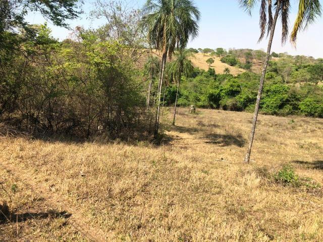 Fazenda a venda em Piracanjuba de 20 alqueires para Pecuária e lavoura - Foto 16