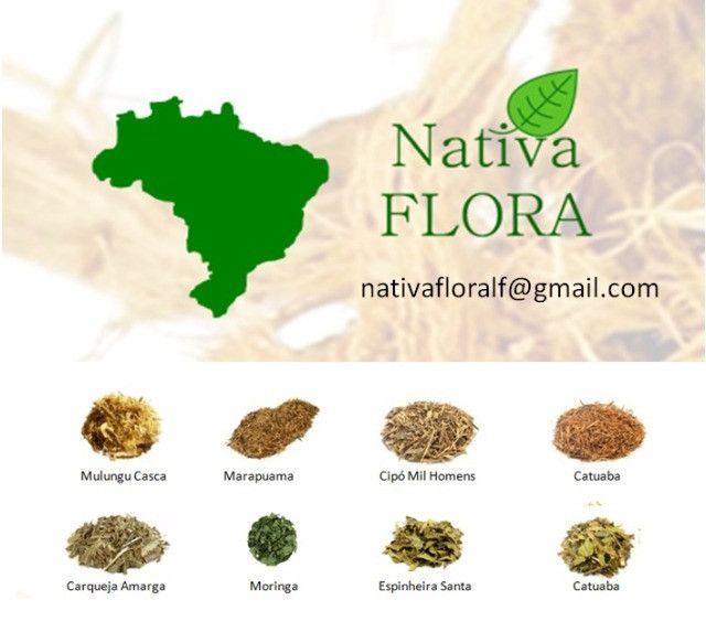 Produtos Naturais e orgânicos - Foto 3
