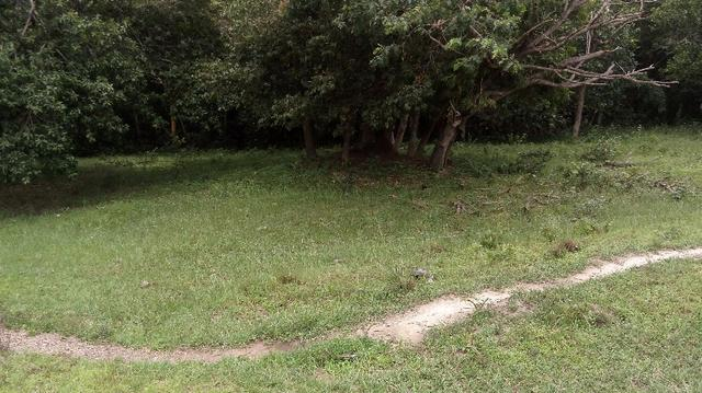 Fazenda 10 km da cidade Cuiaba - pedra 90 - Foto 13