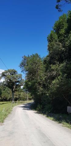 Terreno em Urubici - Foto 2