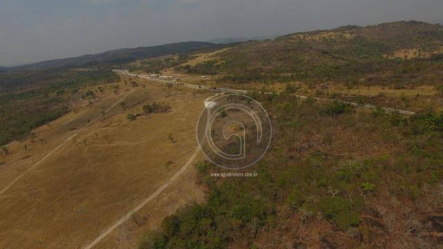 Fazenda 1.000 ha beira do asfalto - Foto 4