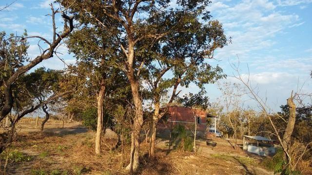 Vendo/Troco chacara na estrada de chapada, R$ 135.000,00 (Pego carro e casa) - Foto 5