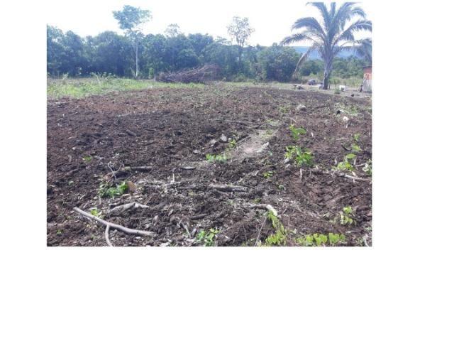 42 hectares, aceito camioneta, capão verde, terra preta,culturão, ocasião - Foto 4