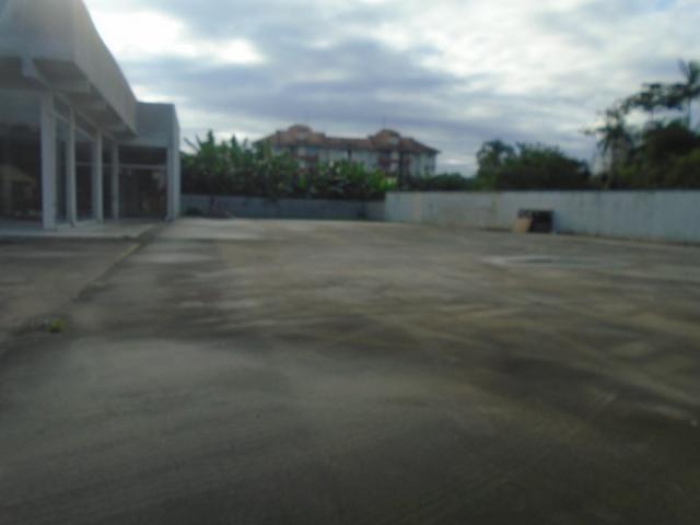 Terreno para alugar em Santo antonio, Joinville cod:08135.002 - Foto 4
