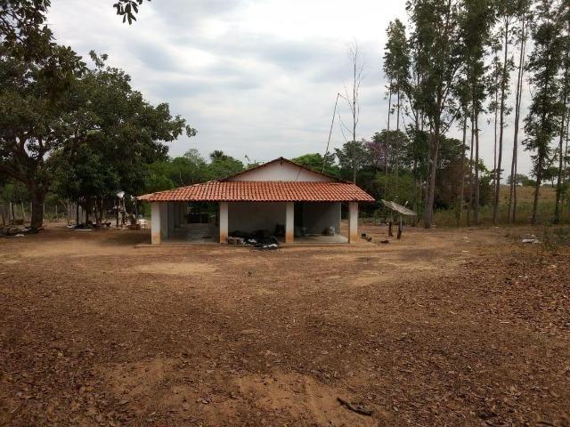 Fazenda de 216 alqueires 1.045,44 hectares- Miracema do Tocantins-TO - Foto 19