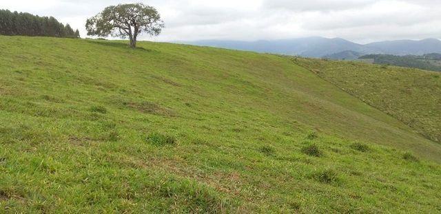 Vendo Sitio em Pouso Alto - MG - Foto 2