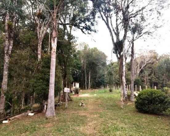 Chácara à venda em Campo lençol, Rio negrinho cod:CH00016 - Foto 9