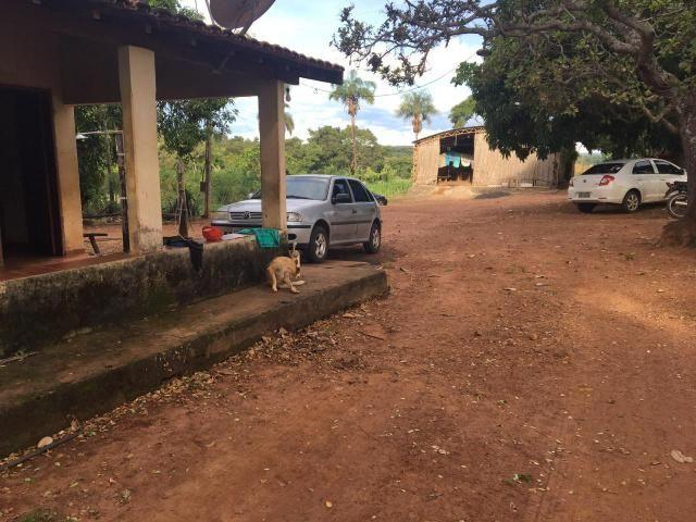 Fazenda 100 Alqueires, entre Professor Jamil e Piracanjuba - Foto 5