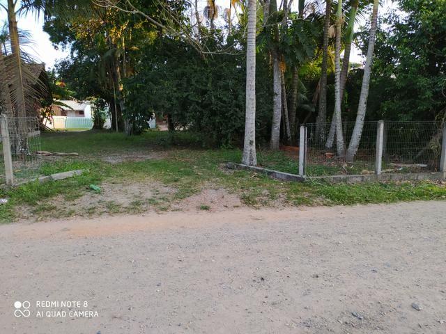 Terreno barra do sul - Foto 2