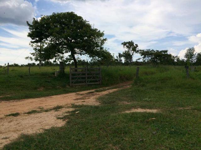 Fazenda rural à venda, Residencial Náutico, Três Marias. - Foto 12