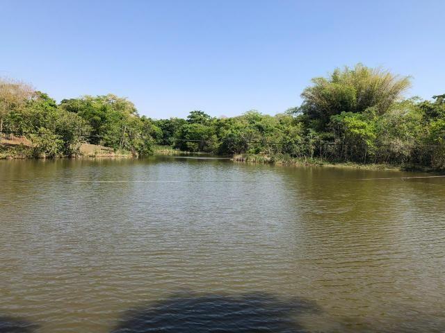 Fazenda a venda em Piracanjuba de 20 alqueires para Pecuária e lavoura