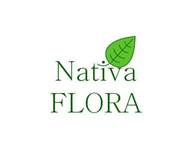 Produtos Naturais e orgânicos - Foto 2