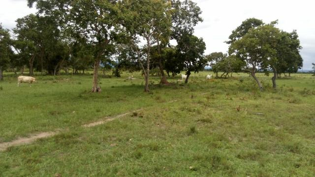 Fazenda 10 km da cidade Cuiaba - pedra 90 - Foto 10