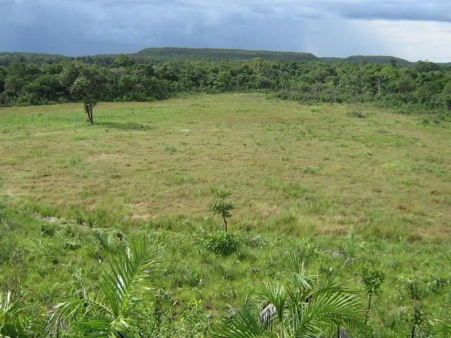 Almas-TO - Fazenda distante de Palmas 210 Km - Foto 13