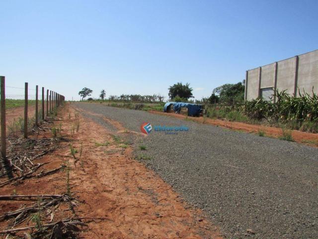 Terreno para alugar, 4000 m² por R$ 1/mês - Sitio Santana - Sumaré/SP - Foto 2