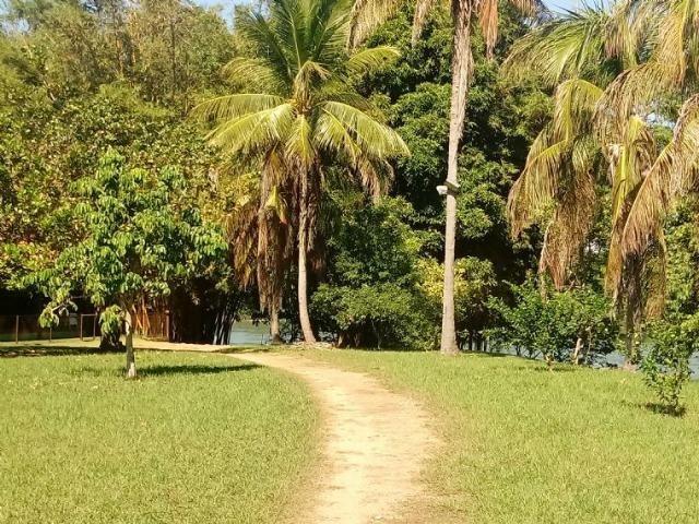 Chácara de porteira fechada na beira do rio Cuiabá com barco gado cavalo casa boa