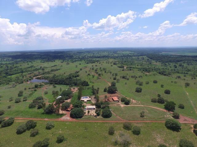 Fazenda de 216 alqueires 1.045,44 hectares- Miracema do Tocantins-TO - Foto 15
