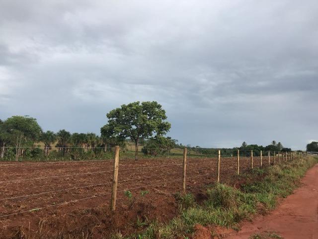 Fazenda plana e rica em água, 24 Alqueires (116.16 ha ) Bela Vista de Goias - Foto 17