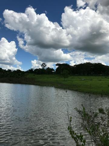 Oportunidade Extra Fazenda 100 Alqueires ou 484 Hectares Aragoiânia - Foto 8