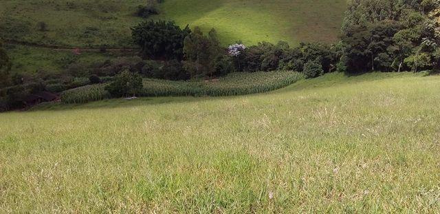 Vendo Sitio em Pouso Alto - MG - Foto 4