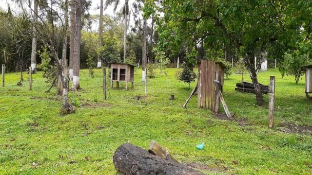 Sitio à venda, 40.500,00M² por R$400.000,00 - RIO DO SALTO - RIO NEGRINHO/SC - Foto 9