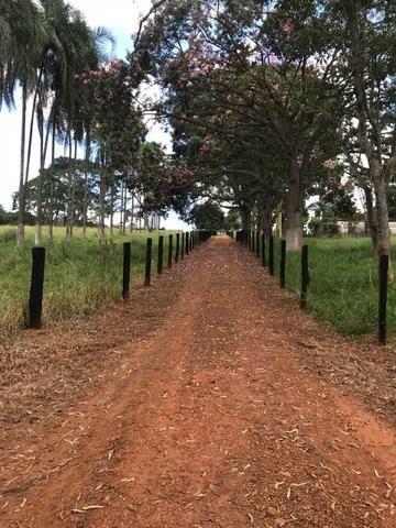 A fazenda do seu sonhos - Foto 2