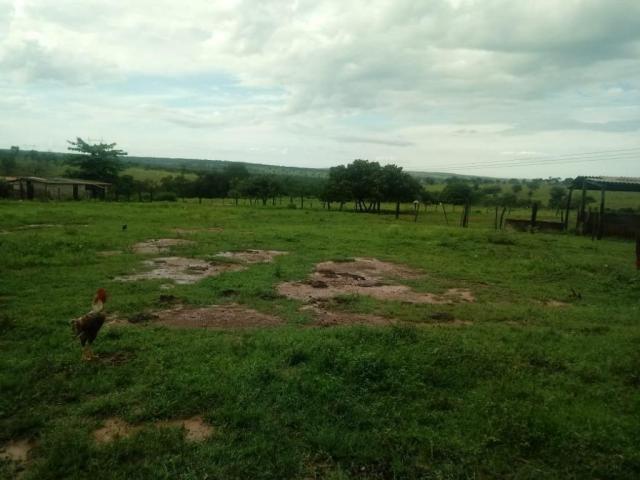 Fazenda rural à venda, Residencial Náutico, Três Marias. - Foto 20