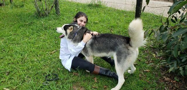 Cuidadora de Animais - Foto 3