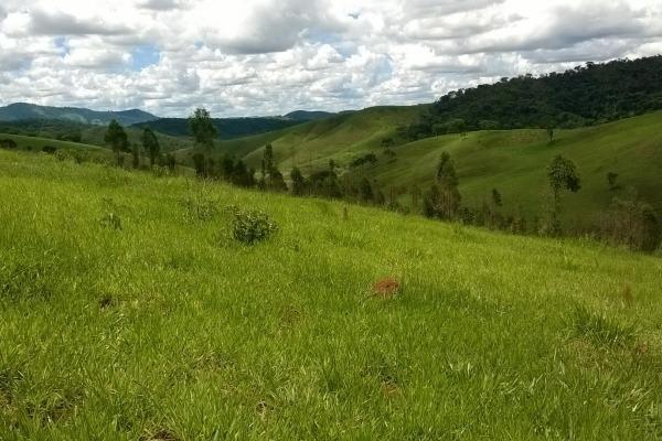 Vendo- Sítio no Sul de Minas com 26 hectares!! - Foto 2