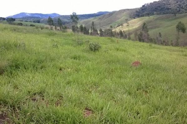 Vendo- Sítio no Sul de Minas com 26 hectares!! - Foto 7