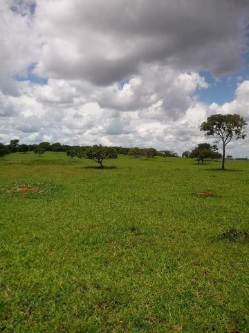 Fazenda a venda em Piracanjuba de 20 alqueires para Pecuária e lavoura - Foto 5
