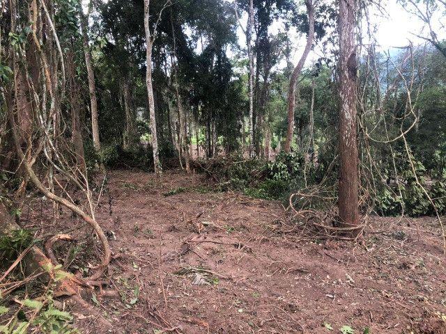 Vendo fazenda na Bahia com 100 hectares (1.000.000 m²) - Foto 12
