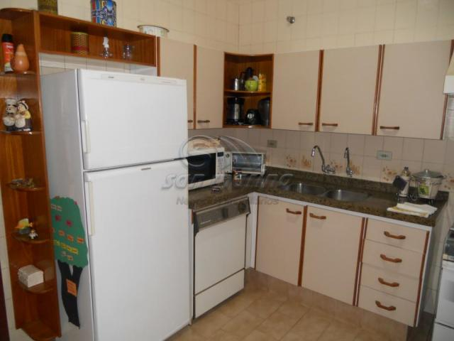 Casa à venda com 4 dormitórios em Centro, Jaboticabal cod:V3679 - Foto 9