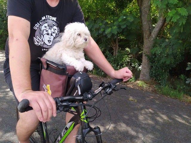 Cadeirinha Altmayer Dianteira Pet até 30kg - Várias Cores!!! - Foto 3
