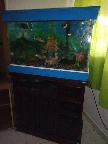 Vendo aquário 120 litros com cômoda  - Foto 2