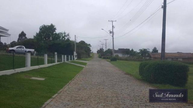 Terreno à venda, Campo Largo da Roseira, São José dos Pinhais. - Foto 3
