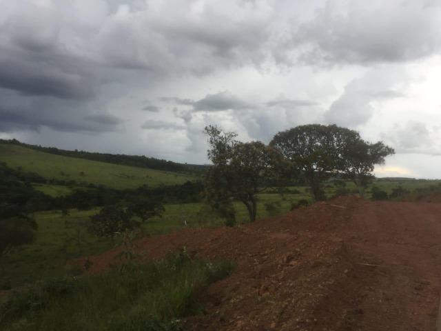 4 Alqueires c/ Rio p/ Lotear, Haras, Lazer, Gado. 40 km Anápolis-GO - Foto 2