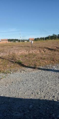Terreno Araquari entrada + parcelas - Foto 3