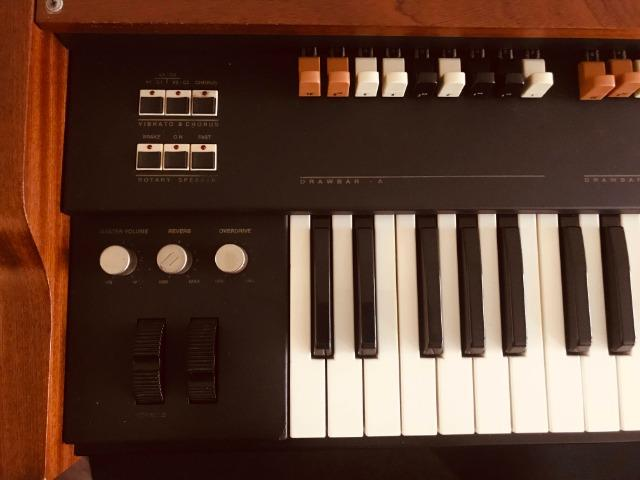 Orgão Tokai Tx5 Classic - Foto 5