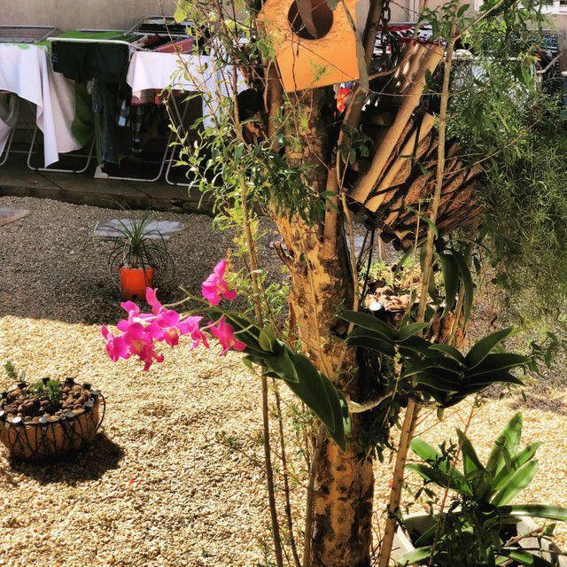 Fácil locação com água, luz e academia já inclusa no aluguel - Foto 3