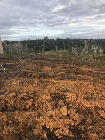 Vendo fazenda na Bahia com 100 hectares (1.000.000 m²) - Foto 3