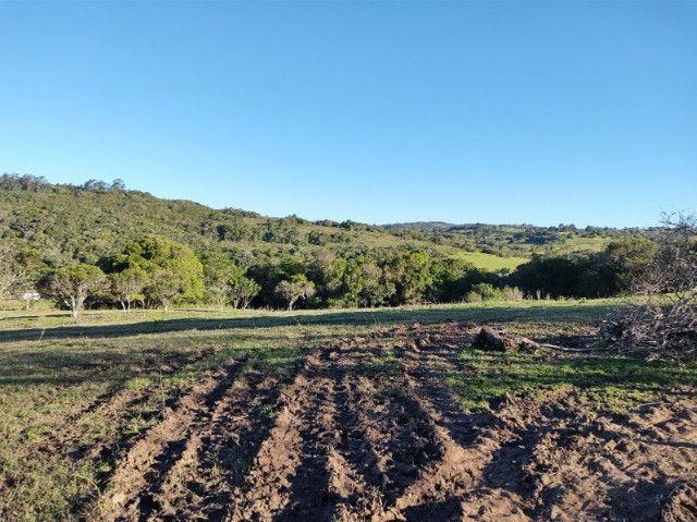 Fazenda na Cascata - 75 ha - Pelotas - RS - Foto 11