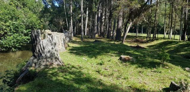 Terreno em Urubici - Foto 9