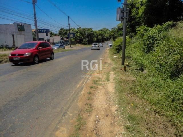 Terreno à venda em Morro santana, Porto alegre cod:CS36007063 - Foto 5