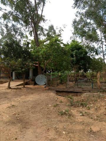 Fazenda de 216 alqueires 1.045,44 hectares- Miracema do Tocantins-TO - Foto 10