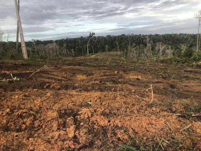 Vendo fazenda na Bahia com 100 hectares (1.000.000 m²) - Foto 11