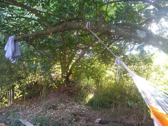 Terreno capela de Santana - Foto 3