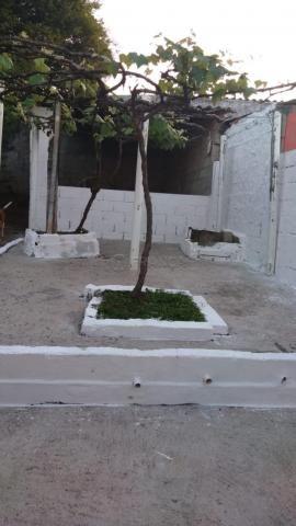 Casa para alugar com 3 dormitórios em Cidade jardim, Jacarei cod:L6367 - Foto 12