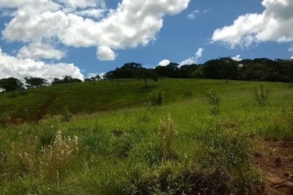 Vendo- Sítio no Sul de Minas com 26 hectares!! - Foto 4